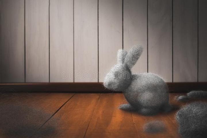 dust-bunny-floor-cleaning-house-concept-dirty-mixed-media-d-elements-image-134264079